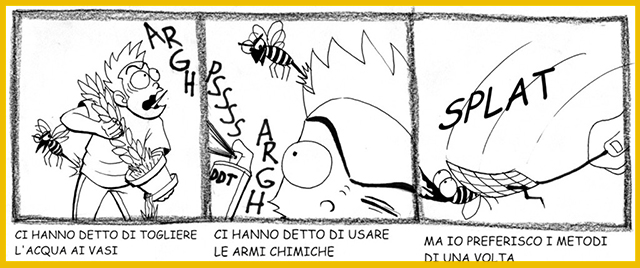 zanzara tigra vignetta