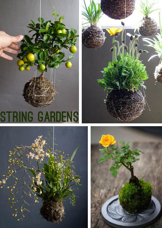 String gardens esempi di possibili realizzazioni.