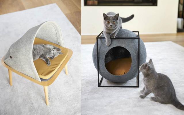 Esempi di cuccie particolari e belle per gatti.