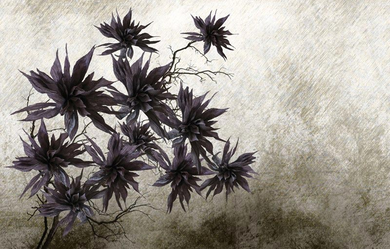 Carta da parati con maxi fiori monocolore.