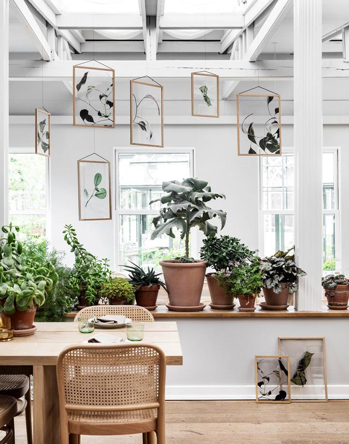 Floating Leaves sono dei quadri da appendere anche al soffitto con stampe di foglie in pellicola.